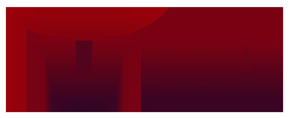 Secure-CE – Ihr Sicherheitsdienst aus Hannover